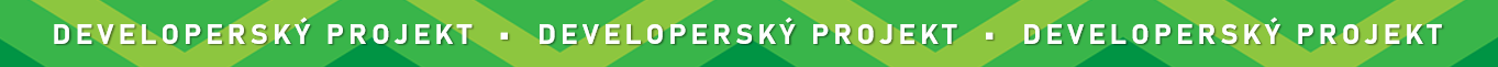 developersky projekt lista
